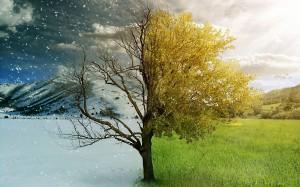http://www.serenityhealth.com/blog/wp-content/uploads/2014/03/summer-and-winter.jpg
